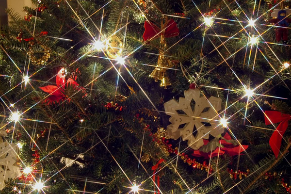 Spread Holiday Cheer this Season